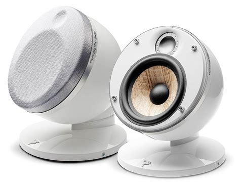 Focal Dome Flax 2