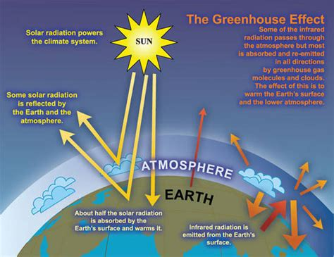 10 Facts About Greenhouse Gas